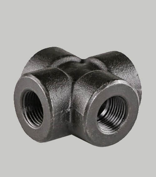 Alloy Steel F5 Threaded Fittings